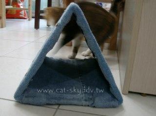 三角型貓隧道-2