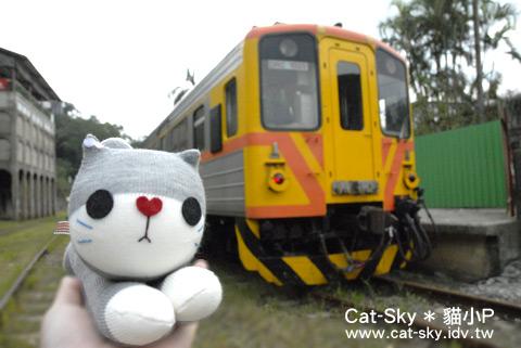 小灰貓與小火車  (貓小P襪娃娃)