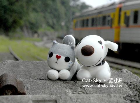 小灰貓與小白狗  (貓小P的襪娃娃)
