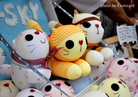 貓小P的貓箱子-拔辣拍的照片喔!
