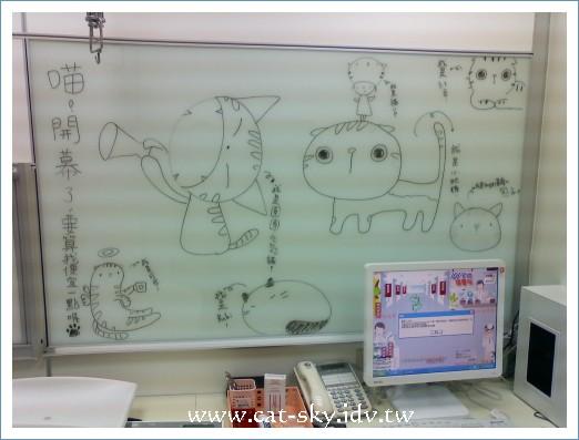 小P在101台北貓醫院診療室寫板上的貓插畫!
