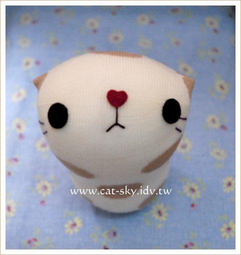 小泡芙_身上有大圓點點的泡芙貓