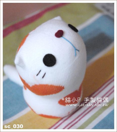 身上有著橘色愛心的小白貓_甜甜