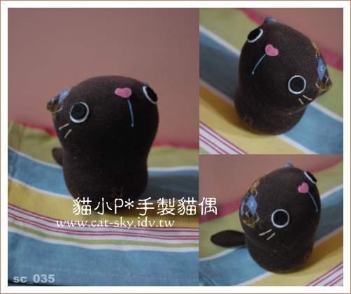 呆呆貓-巧克力