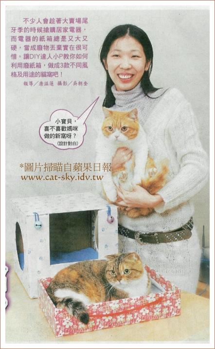 肥糖和圓圓是貓咪模特兒,好友小若當人物模特兒喔!