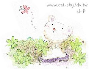 小白熊的幸運草