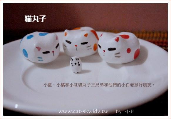 貓丸子三兄弟與他們的好朋友-小白