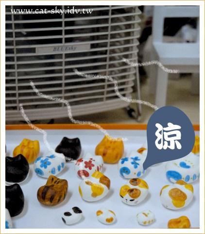 吹電風扇的貓餃子