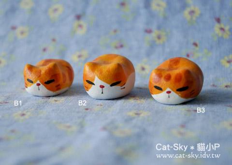 貓餃子-橘貓