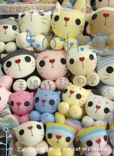 親愛的小小肥貓咪們:生日快樂喔!  貓小Pmama留~