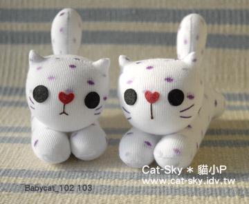 Babycat- 深白色二貓組  (白白與點點)