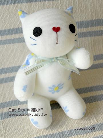 元氣貓 - 白小花