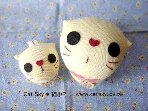 呆呆貓 和 拎小貓  張大眼睛 裝可愛  快來把她們帶回家吧!