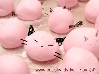 好可愛的貓湯圓!