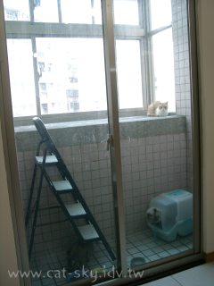 陽台本身就是陽春的貓套房
