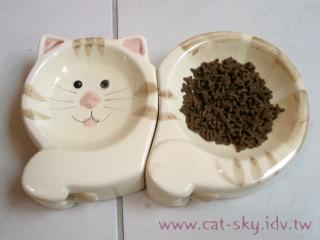 買給喵喵的可愛貓碗!