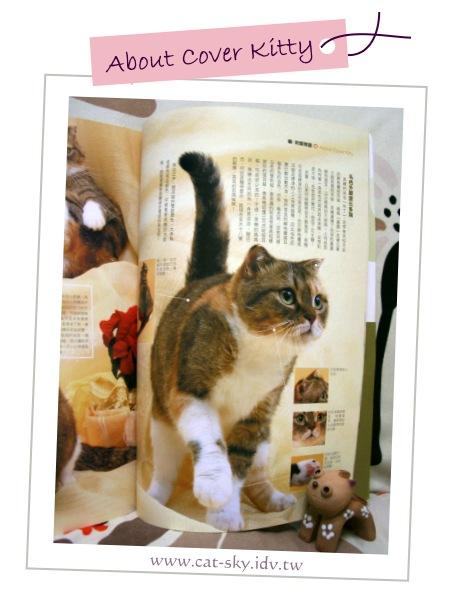 貓  封面物語 小肥糖 2