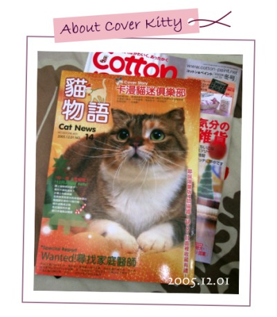 about cover kitty -  小肥糖 !