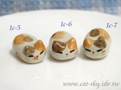 三花醬燒貓