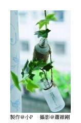 小瓶罐 *花草植物瓶