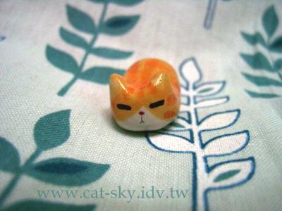 s3  橘貓