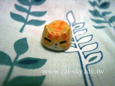 s4  橘貓