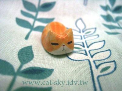 s6  橘貓