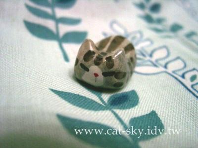 s9  銀虎斑貓