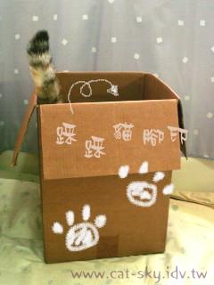 踩踩貓腳印...到箱子裡來跟我悄悄話喔!